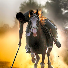 On target by Abdul Rehman - Sports & Fitness Other Sports ( horseback · natural light · pakistan · national geographic · horse · dust · natural · rural · rural sports,  )