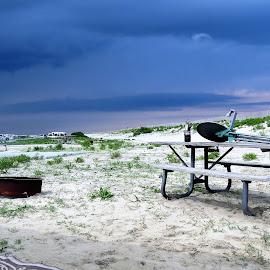Assateague State Park beach by Mary Gallo - Landscapes Beaches ( park, maryland, beach, atlantic, landscape, assateague,  )