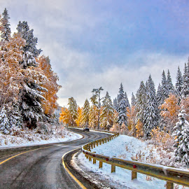 coming to Siberia.. by Dmitry Samsonov - Landscapes Travel ( russia, winter, chuya route, altai, road, siberia )