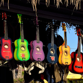 by Rany Haj - Artistic Objects Musical Instruments ( nikon 18-140, guitar,  )
