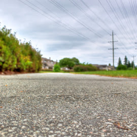 Langley Lane Greenway by Ernie Kasper - City,  Street & Park  City Parks ( field, park, wires, grass, power, langley, view, concrete )