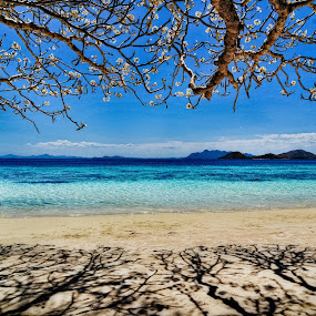 The Coron Escape by Rman Alfred Lorenzo - Landscapes Beaches ( the magnifico photography, coron island, coron, rman lorenzo, philippines beaches )