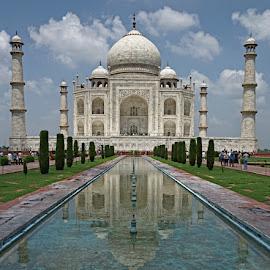 Taj Mahal by Prakash Purushotham - Buildings & Architecture Public & Historical ( ancient, architecture, historical )