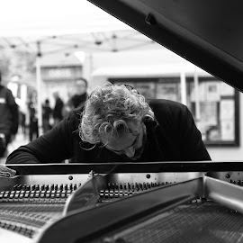 Concerto by Mike Coombes - People Musicians & Entertainers ( music, concert, brighton, piano, concerto, festival, musician, pianist )