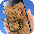 Live Wallpaper Snake Screen APK for Kindle Fire