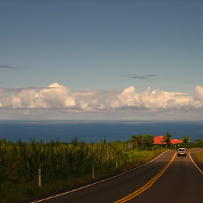 Big Island Hawaii by Anu Sehgal - Landscapes Waterscapes