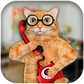 Cat Caller Joke for Lollipop - Android 5.0