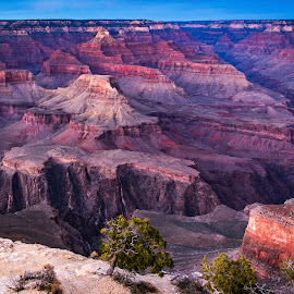 Grand Canyon A by Steven Aicinena - Landscapes Travel ( grand canyon national park, arizona, grand canyon )