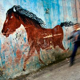 horse by Celal Erdem - City,  Street & Park  Street Scenes ( street, horse, wallpaper, wall )
