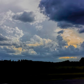 Summer Storms by Don Kuhnle - Landscapes Cloud Formations ( clouds, florida, weather, storms, rain )