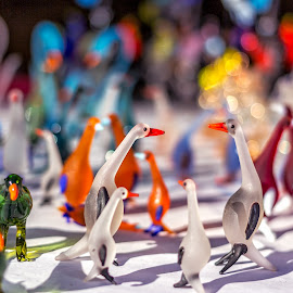 Bokeh by AJ Canon - Artistic Objects Other Objects ( glassy toys, birds, bokeh,  )