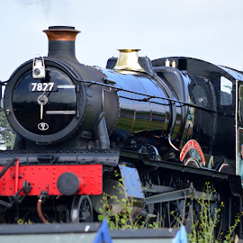 Lydham Manor 7827 Steam Engine by Bryan Wenham-Baker - Transportation Trains ( steam engine, goodrington, lydham manor 7827, engine, railroad, steam train, devon, england, south sands, railway, steam railway, train, torbay, lydham manor, steam, 7827 )