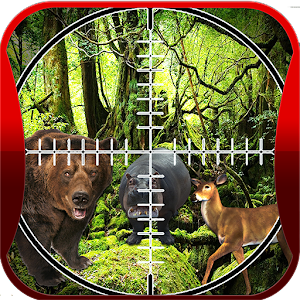 Hunting Animals in Jungle II