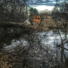 Medford Mass by Paul Gibson - Instagram & Mobile iPhone ( sky, hdr, waterscape, trees, lake, massachusetts, light )