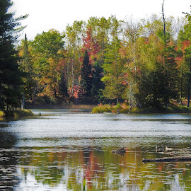 Tranquil Moment by Kathy Woods Booth - Landscapes Waterscapes ( michigan, reflection, reflections, lake, autumn colors )