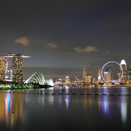 3 in 1 (MBS / Gardens By The Bay / The Singapore Flyer) by Han Yi - City,  Street & Park  City Parks
