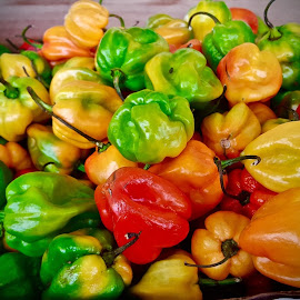 Florida Scotch Bonnet Peppers by Michael Villecco - Food & Drink Fruits & Vegetables ( florida, vegetables, picante, scotch bonnet )