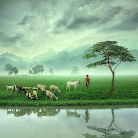 Little Shepherd by Ipoenk Graphic - Digital Art Things