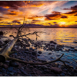 Evening by Jan Egil Sandstad - Landscapes Sunsets & Sunrises ( colors, sunset, night, evening, norway )