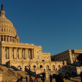 Capitol  by Leelamohan Anantharaju - Buildings & Architecture Office Buildings & Hotels ( legislatures, us congress, us capitol, us tourist attractions, architecture )