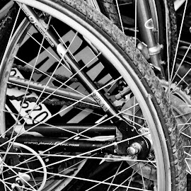 For Rent by Judy Laliberte - Novices Only Objects & Still Life ( contrast, bikes, wheels, b & w, spokes )
