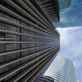 Louis MM by Lieven Lema - Buildings & Architecture Office Buildings & Hotels ( canon, paris, eos, 2010, 50d )