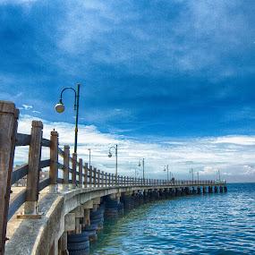 Bridge by Reza Roedjito - City,  Street & Park  City Parks