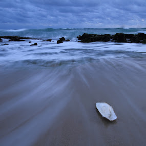 Receding water by Tony Burnard - Landscapes Waterscapes ( water, cuttlefish, sea, ocean, receding water )