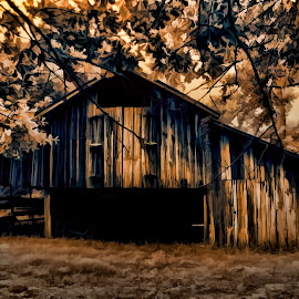 Ye Ol' Barn by Michael Grado - Buildings & Architecture Architectural Detail ( shed, structure, wood, barn, storage )