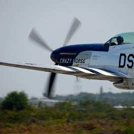 P51 Mustang by Bill Telkamp - Transportation Airplanes ( p51, airplanes, airplane, airshow )