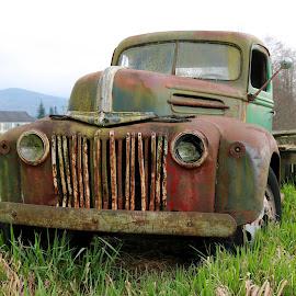 by Michael Almond - Transportation Automobiles
