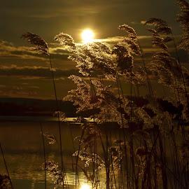 Náklo by Maru Vykydalová - Landscapes Sunsets & Sunrises ( sunset )