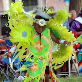 Bird Dance by Bonnie Burgeson - People Musicians & Entertainers