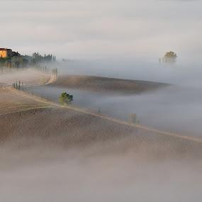 Tuskany mists I by Silva Predalič - Landscapes Prairies, Meadows & Fields ( farm, tuscany, mists, autumn, path, cypress, italy, hazy, fields )