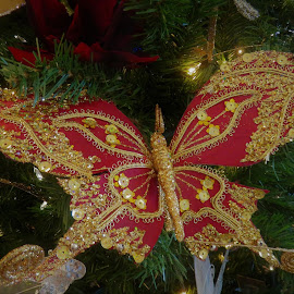 by Denise O'Hern - Public Holidays Christmas
