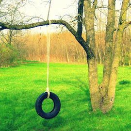 The Old Swing by Patricia Crawford - Artistic Objects Other Objects ( 2013-04-23 )
