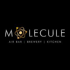 Molecule Air Bar, Sector 29, Sector 29 logo