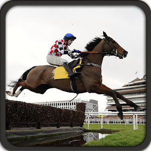Horse Racing Jump Simulation