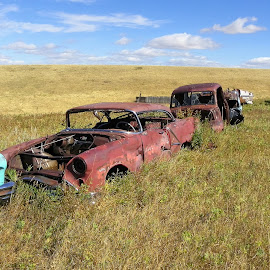 Abandoned Cars South Of Stockett by James Oviatt - Transportation Automobiles