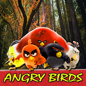 Download Android App Guide Angry Birds for Samsung