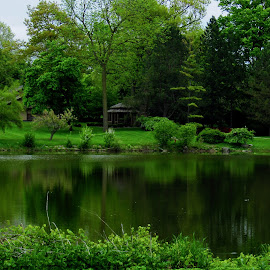 Greenspace by Howard Sharper - City,  Street & Park  City Parks ( parks, greenery, green, reflections, riverside,  )