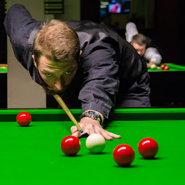 Focusing by Nenad Borojevic Foto - Sports & Fitness Cue sports (  )