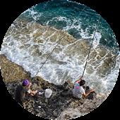 Free Best SaltWater Fishing Destinations USA APK for Windows 8