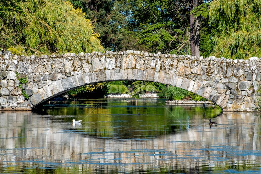 Stone Bridge by Darren Sutherland - Buildings & Architecture Bridges & Suspended Structures