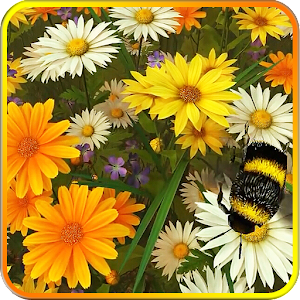 Wild Flowers 3D Live Wallpaper