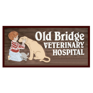 Old Bridge VH For PC / Windows 7/8/10 / Mac – Free Download