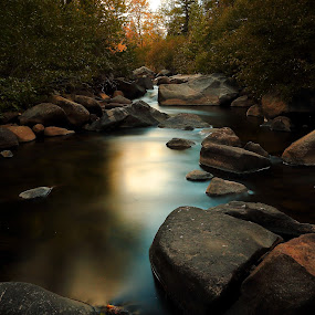 Fall Mirage by Dennis Ducilla - Landscapes Waterscapes ( slow water, california, fall, trees, reflections, streams, ducilla, rocks leaves, river )