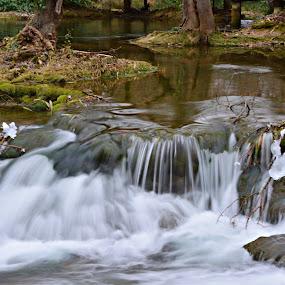 Krka by Jelena Puškarić - Landscapes Waterscapes ( water, waterscape, waterfall )