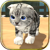 Download Android Game Cat Simulator : Kitty Craft for Samsung