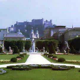 Mirabell Garden Salzburg by Barry Lehman - City,  Street & Park  City Parks ( europe, salzburg, parks, gardens, austria,  )